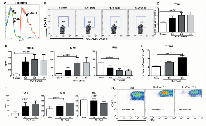 CLEC-2 expression on platelets induces T regulatory cells.