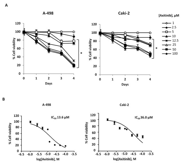 Axitinib inhibits RCC cell viability in a dose and time-dependent manner.