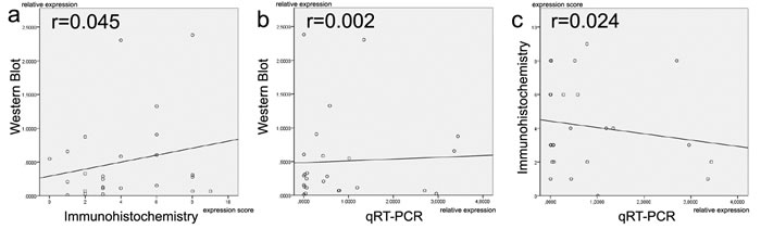 Comparison of TGF-ß2 expression levels between different methodical platforms (Western blot, immunohistochemistry and qRT-PCR).