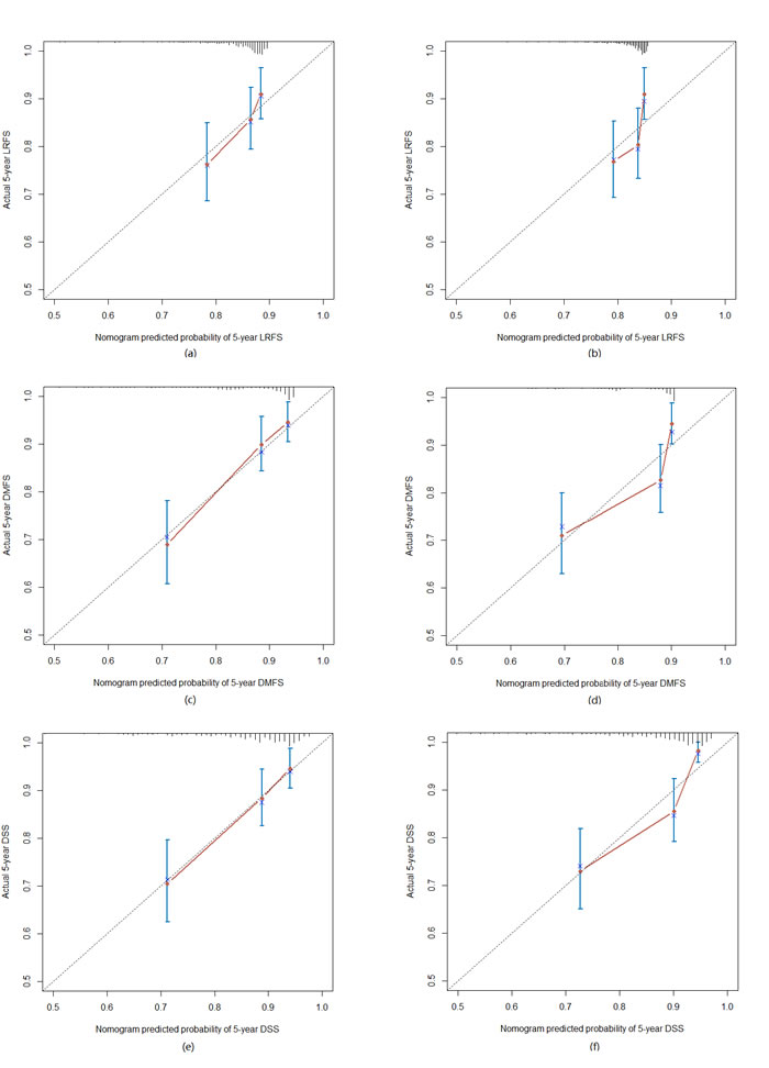 The calibration curve for predicting patient 5-year survival at (a) LRFS in the training set, (b) LRFS in the test set; (c) DMFS in the training set, (d) DMFS in the test set; (e) DSS in the training set, (f) DSS in the test set.