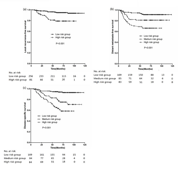 Kaplan-Meier curves stratified by different risk group (a) LRFS, (b) DMFS, (c) DSS