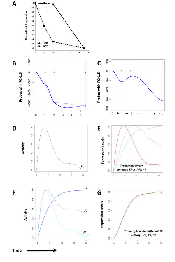 Measurement of transcript degradation and influence of degradation on interpretation of expression data.