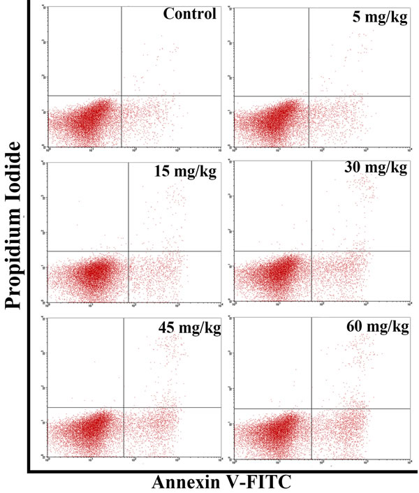 Changes of the apoptosis in the thymus by flow cytometry at 42 days of age.