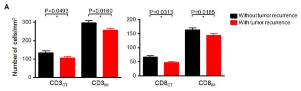 Negative correlation between the number of CD3