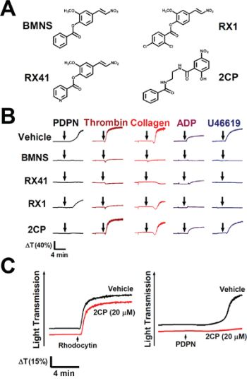 Selective inhibition of PDPN-induced platelet aggregation by 2CP.