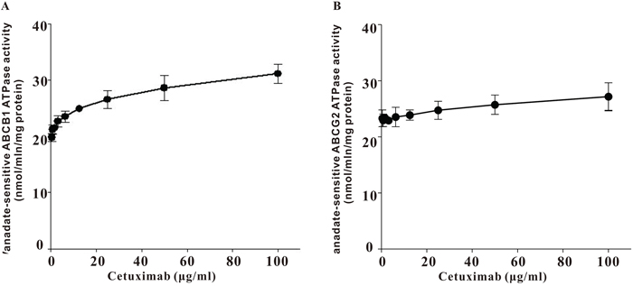 Effect of cetuximab on ATPase actvity of ABCB1 and ABCG2.