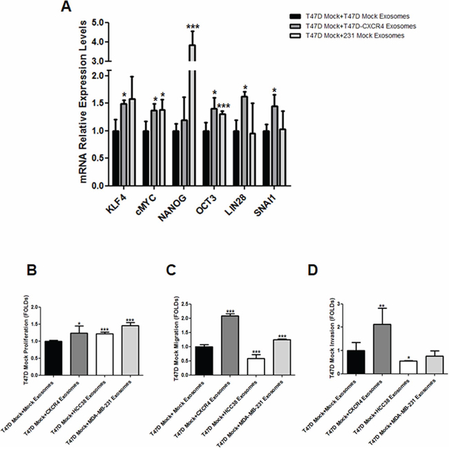 A. mRNA expression of stemness-related markers in recipient cells after addition of exosomes released by CXCR4-transfected cells.