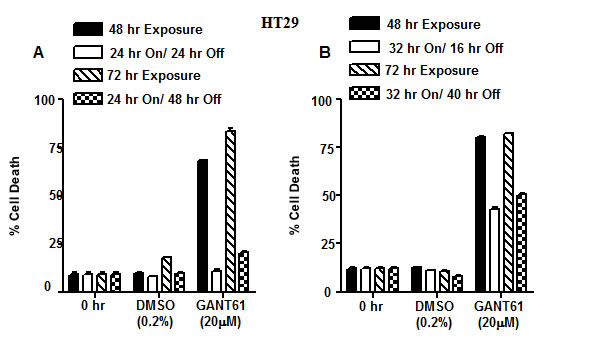 Model of DNA damage and DNA repair in HT29 cells following GLI1/GLI2 inhibition.