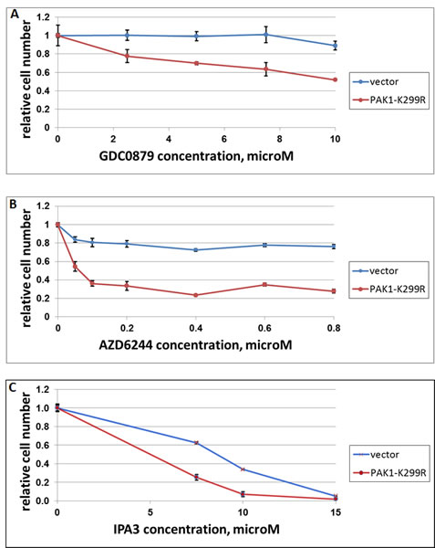 The effect of dominant-negative PAK1 on response of A375 cells to GDC-0897, AZD6244 and IPA3.
