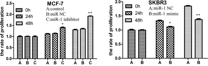miR-1 inhibits breast CSC proliferation in vitro.