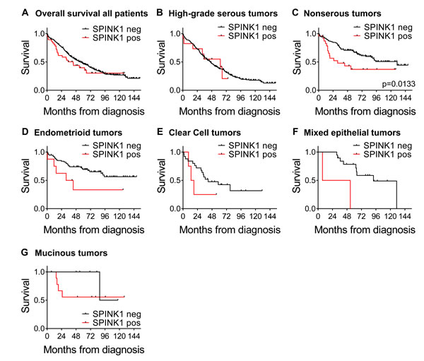 Kaplan-Meier ovarian cancer survival curves by SPINK1 positivity for all patients and morphological subgroups.