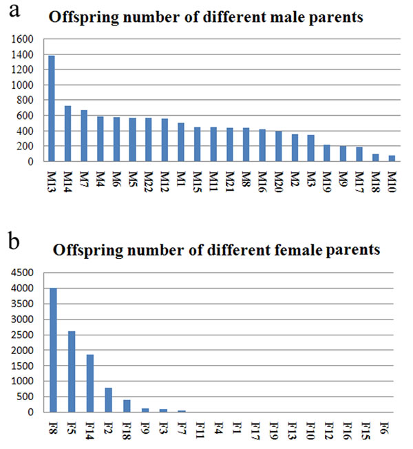 Number distribution of the half-sib families of male and female parents.