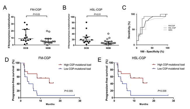 CGPs-mutational load is significantly associated with clinical benefit of anti-PD-1 therapy in NSCLCs.