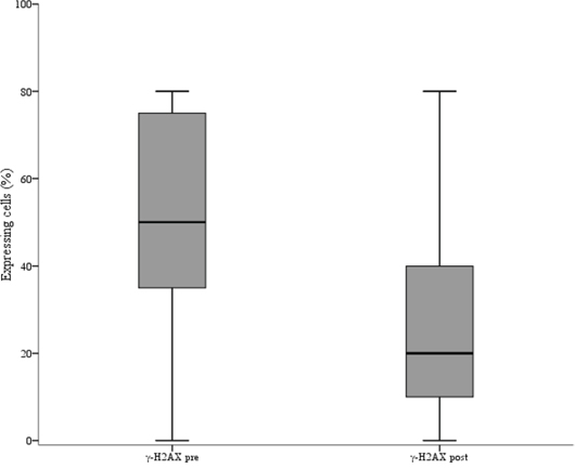 Box plot showing the distribution of γ-H2AX values in pre and post-neoadjuvant chemotherapy samples.