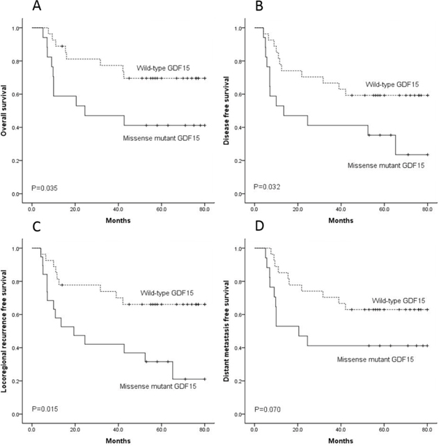 The 27 patients with wild-type GDF15 had better outcome than the 17 patients with missense GDF15 mutation on overall survival.