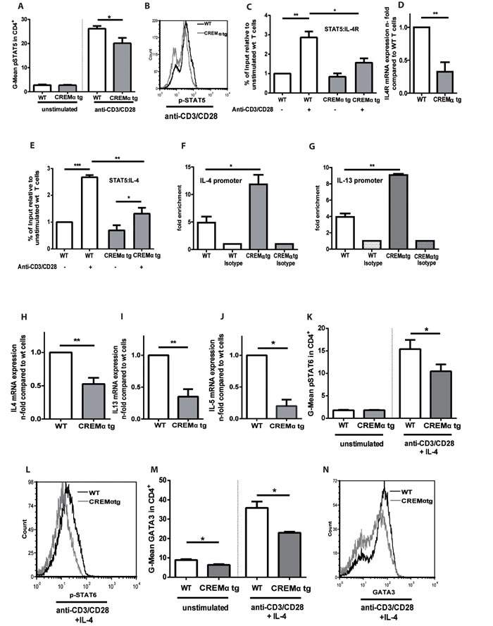 Transgenic overexpression of CREM decreases production of T