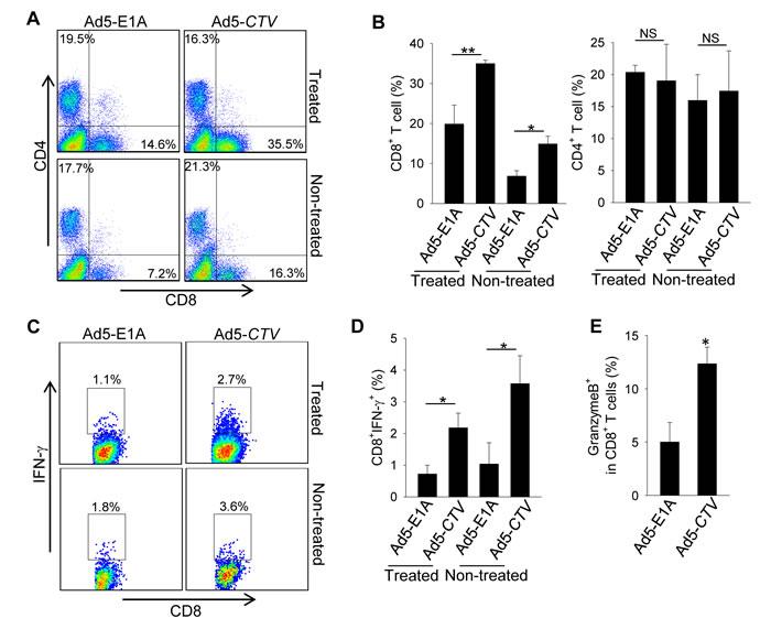 MDA-7/IL-24 enhances anti-tumor immune responses against MMTV-PyMT mammary tumors.