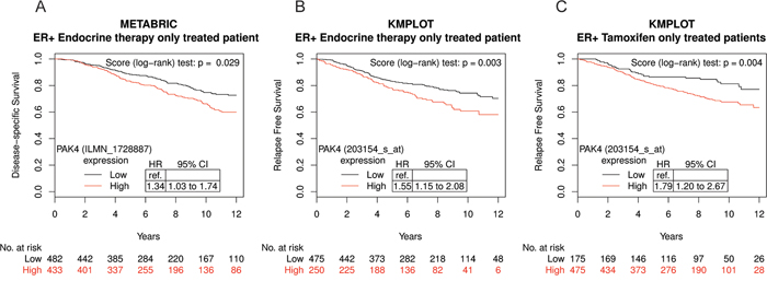 High PAK4 mRNA expression levels correlate with poor survival of endocrine-treated breast cancer patients.