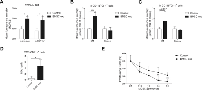 BMSC exosomes activate MDSCs in vivo and enhance their capability of T cell suppression.
