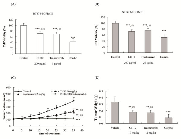 Combination of CH12 with trastuzumab suppressed growth of EGFRvIII