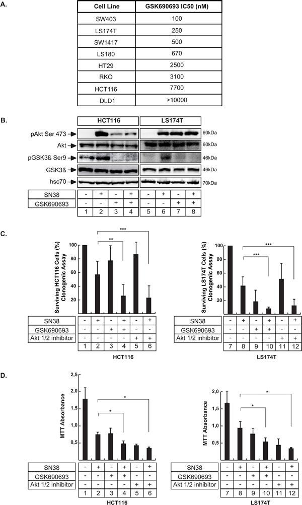 Akt inhibition enhances the effect of sn38 treatment.