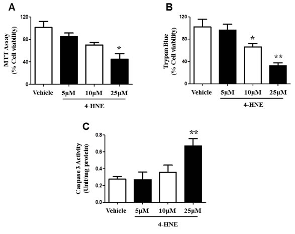 Effects of 4-HNE on SAEC viability and cleaved caspase-3.