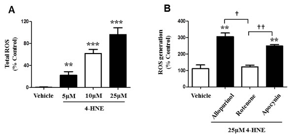 4-HNE induces generation of ROS within SAECs and is specific to the SAEC mitochondrial respiratory chain.