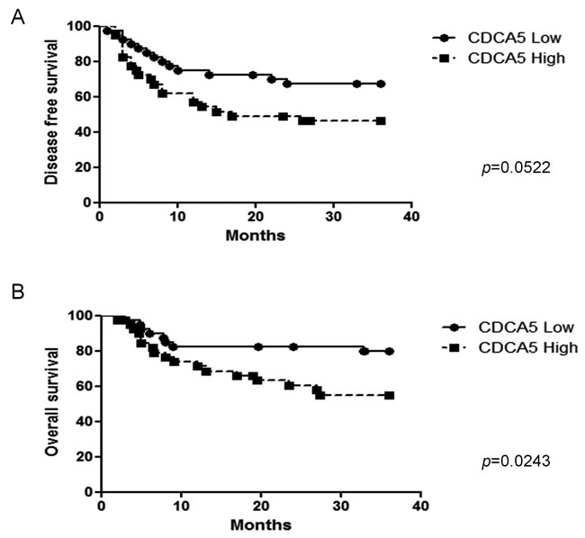 Association between CDCA5 expression level and prognosis.