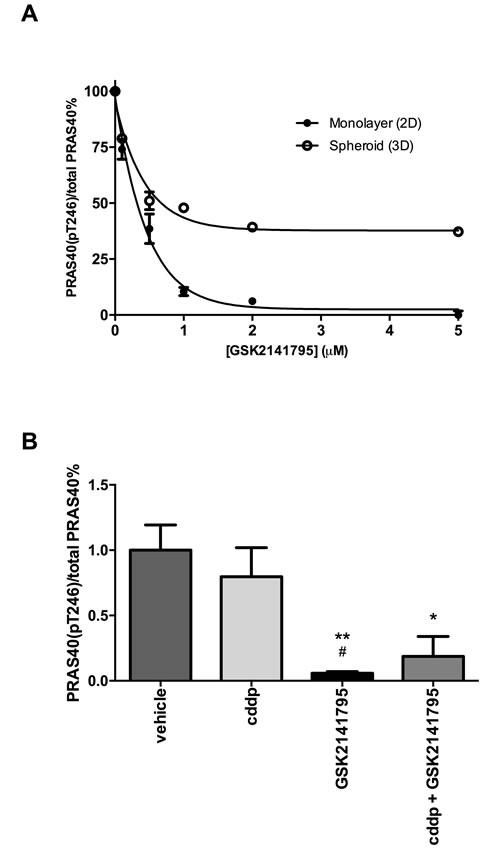 Inhibition of PRAS40 phosphorylation by GSK2141795 in SKOV3 monolayers, spheroids and xenografts.