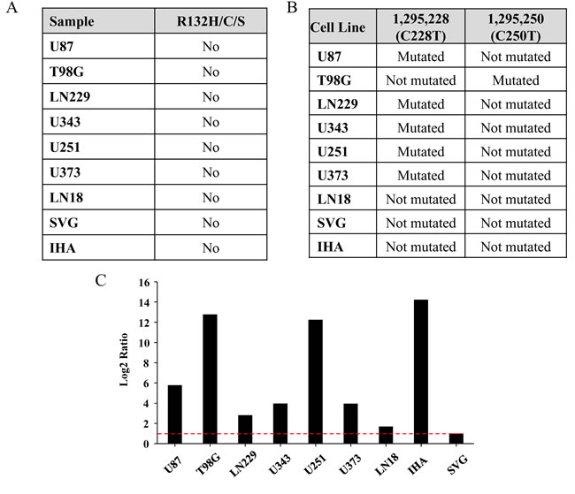 Mutation status of IDH1 and hTERT promoter in the cell lines.