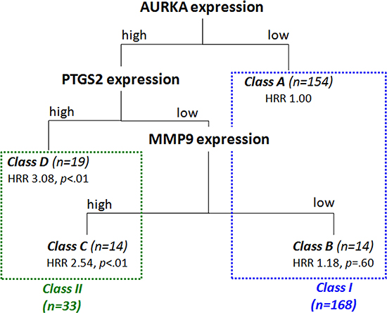Classification tree resulting from the Classification and Regression Tree (CART) analysis including the nine prognostically most relevant proteins in our study cohort (i.e. EGFR, AURKA, VEGFA, PTGS2, SLC2A1, KCNQ1, CEA, MMP9 and HIF1α).