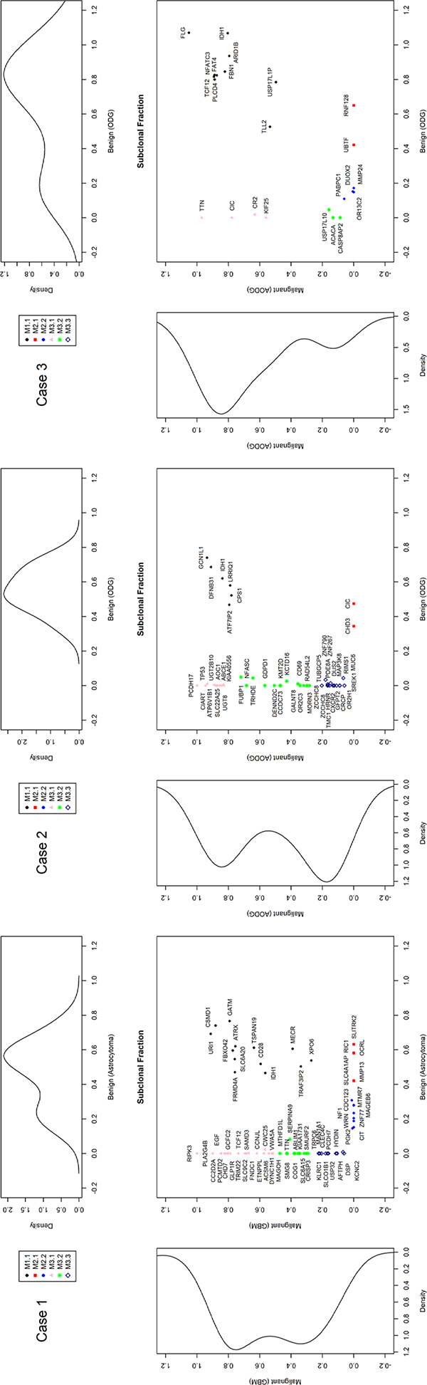 Estimated clonal fractions and their genetic signatures based on somatic point mutation allele frequency and copy number status.
