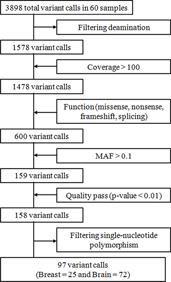 Summary of variant call processing.