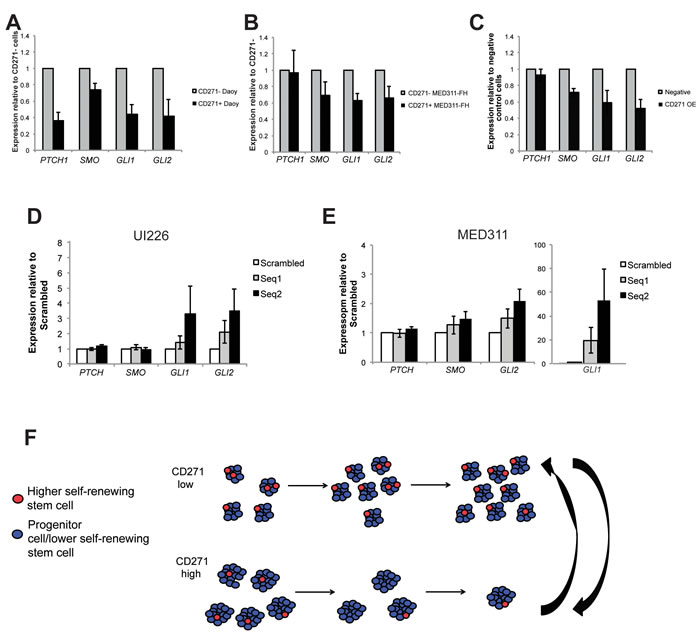 CD271 levels are inversely correlated with expression of SHH pathway genes.