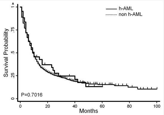 Overall survival and disease-free survival of AML patients with or without hypocellular feature.