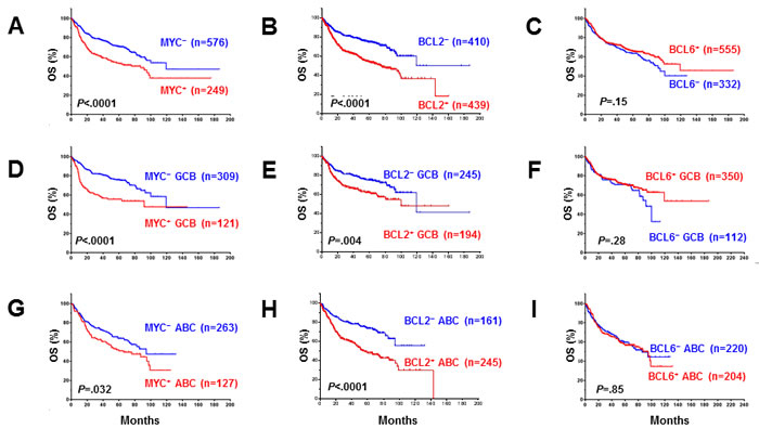 Univariate analysis for DLBCL patients with MYC, BCL2 and BCL6 protein expression in the overall-, GCB, and ABC-DLBCL.