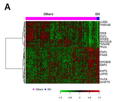 Gene expression signature for