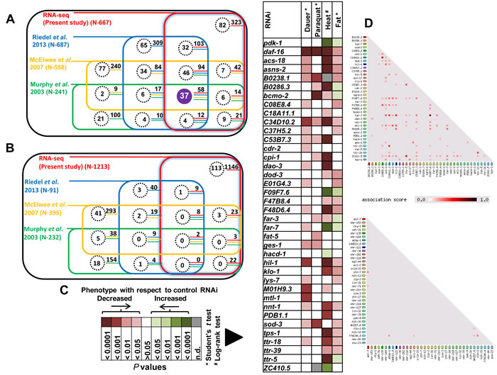 """DAF-16 """"core"""" direct targets contribute robustly towards IIS-regulated phenotypes."""