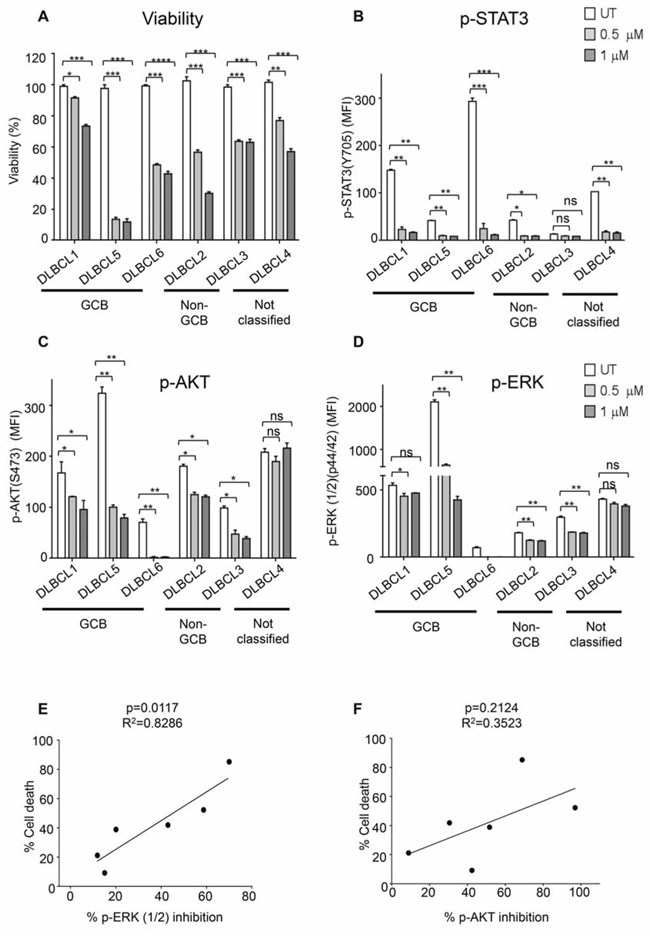 Primary DLBCL cells are sensitive to dual SYK/JAK inhibition.