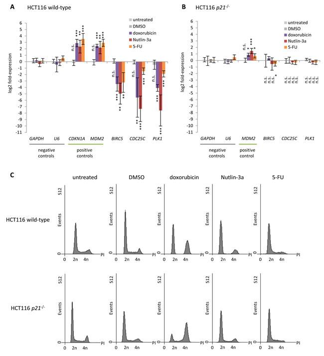 p53-dependent repression of