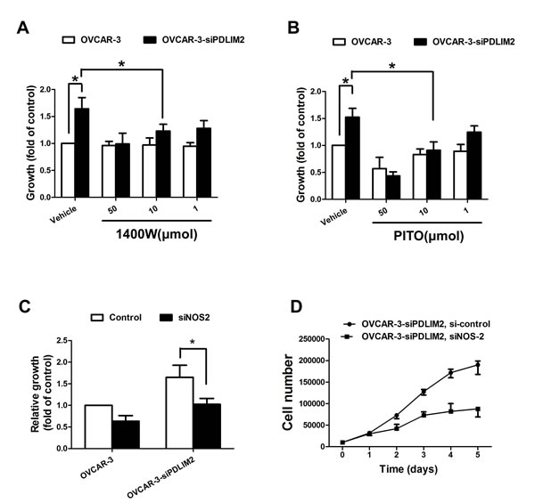 Impaired growth of PDLIM2-repressed ovarian cancer cells under NOS2/NO inhibition