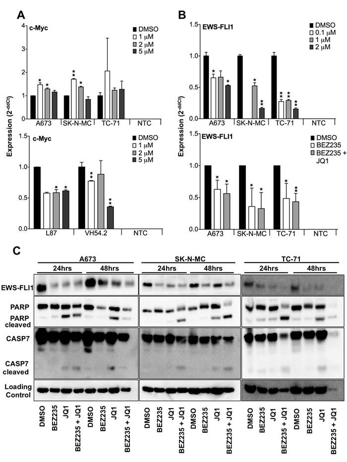 Blockade of BET bromodomain proteins blocks EWS-FLI1 but not MYC expression.
