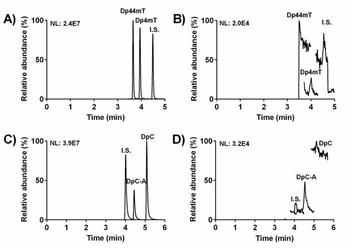 Representative chromatograms from UHPLC-MS/MS analyses: