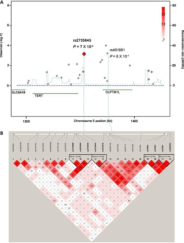 Regional plots for associations at the TERT-CLPTM1L locus on chromosome 5p15.33.