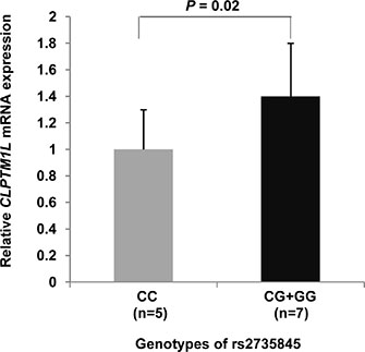 Quantitative real-time RT-PCR for CLPTM1L.