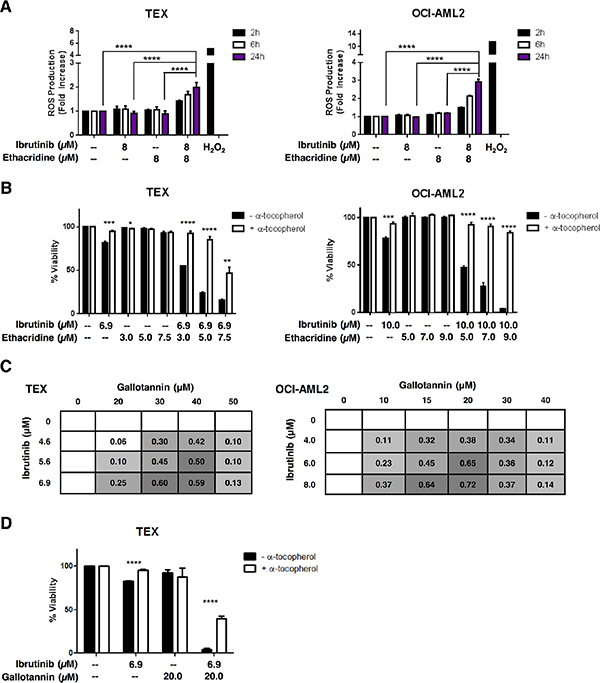 The ibrutinib-ethacridine combination induces cytotoxic levels of intracellular ROS.