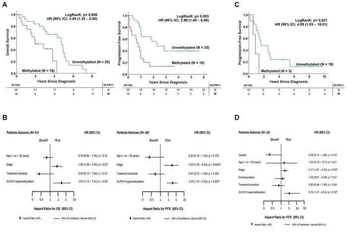 SLFN11 CpG island hypermethylation is an independent factor that is prognostic of poor clinical outcome in ovarian and non-small cell lung cancer patients treated with platinum-derived drugs.
