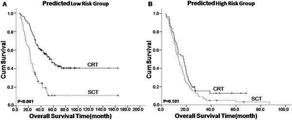 Kaplan–Meier survival analysis of treatment modality in nasopharyngeal carcinoma patients with synchronous metastases (mNPC) regarding the mNPC-SVM classifier.