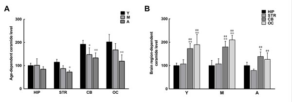 Age- and brain region-dependent differences in ceramide levels.