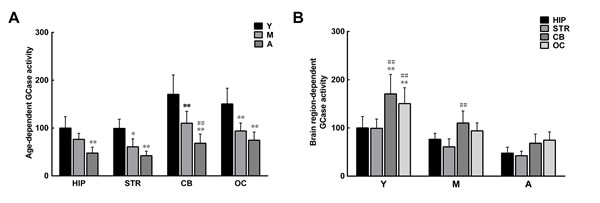 Age- and brain region-dependent differences in glucocerebrosidase (GCase) activity.